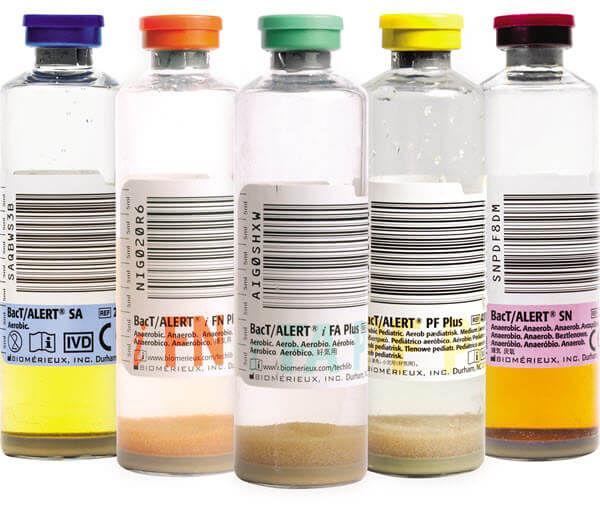 How Many Gles Of Water In A Bottlezeegle Practical Pet Feeder Cat Dog Rabbit Drinker